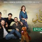 Appeals In Court For Ban On Drama 'Ehd e Wafa'