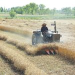 Pakistan Approves Agriculture Relief Package to Support Farmers