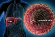 hepatitis b and c