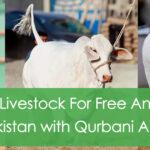 Qurbani App : Install App and Make Digital Qurbani this Year