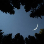The Moon of Muharram has Appeared, Ashura will be on Sunday, August 30
