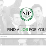 Government's First Ever National Job Portal Launched by NITB