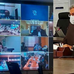 On-campus classes in schools to be suspended for grades 1-8 till April 28: Shafqat Mehmood